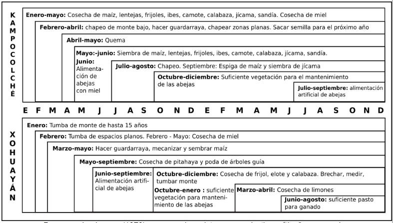 Figura 6. Calendario de actividades  agrícolas y apícolas en Xohuayán y Kampocolché